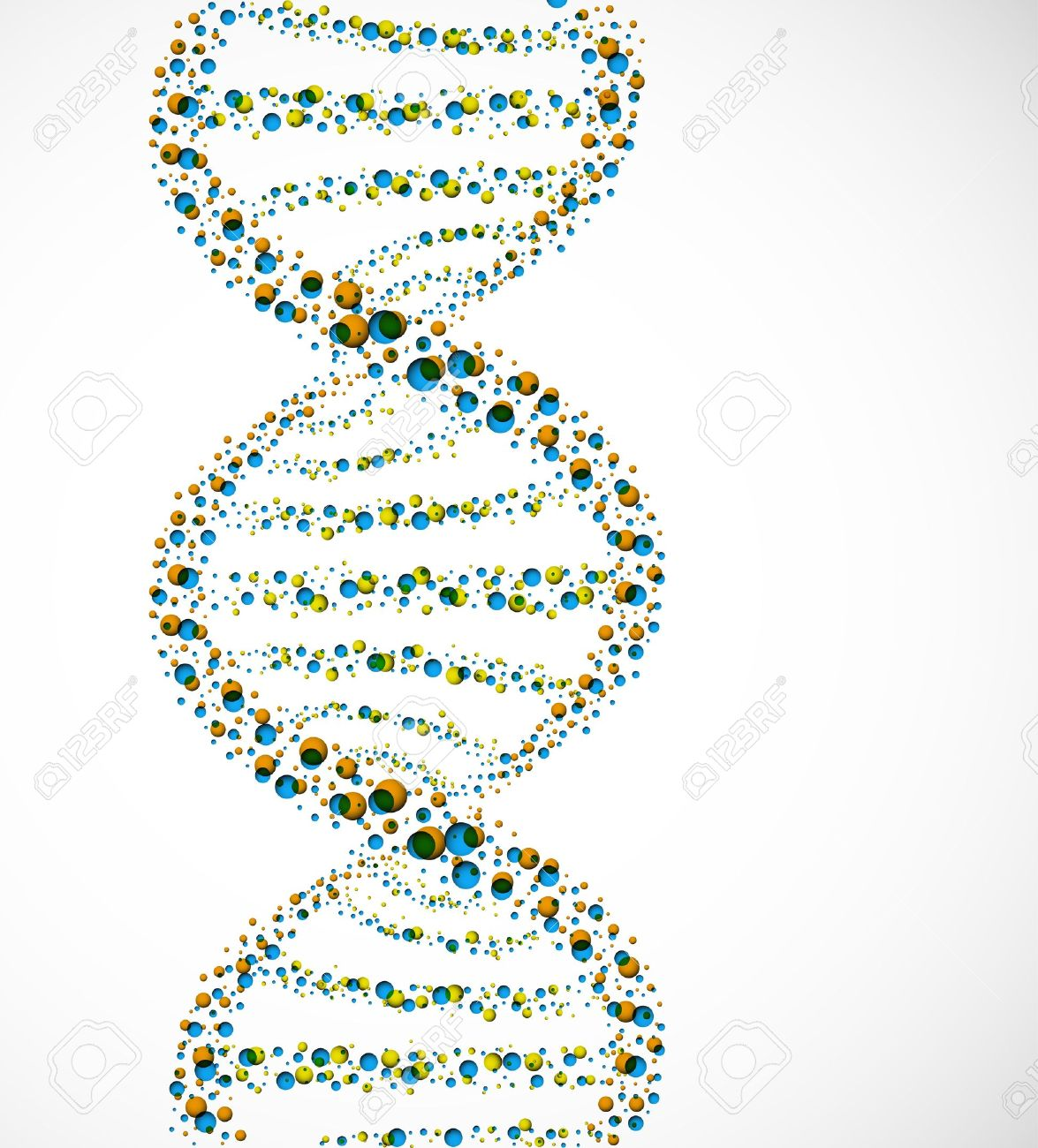 dna molecule of spheres royalty free cliparts vectors and stock