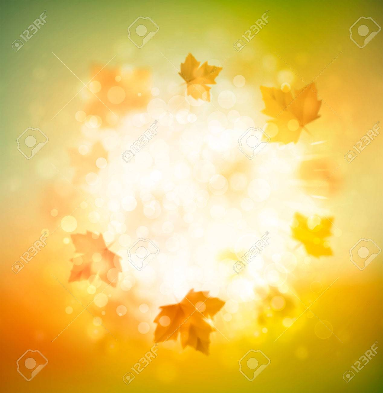 Autumn abstract background - 30546895