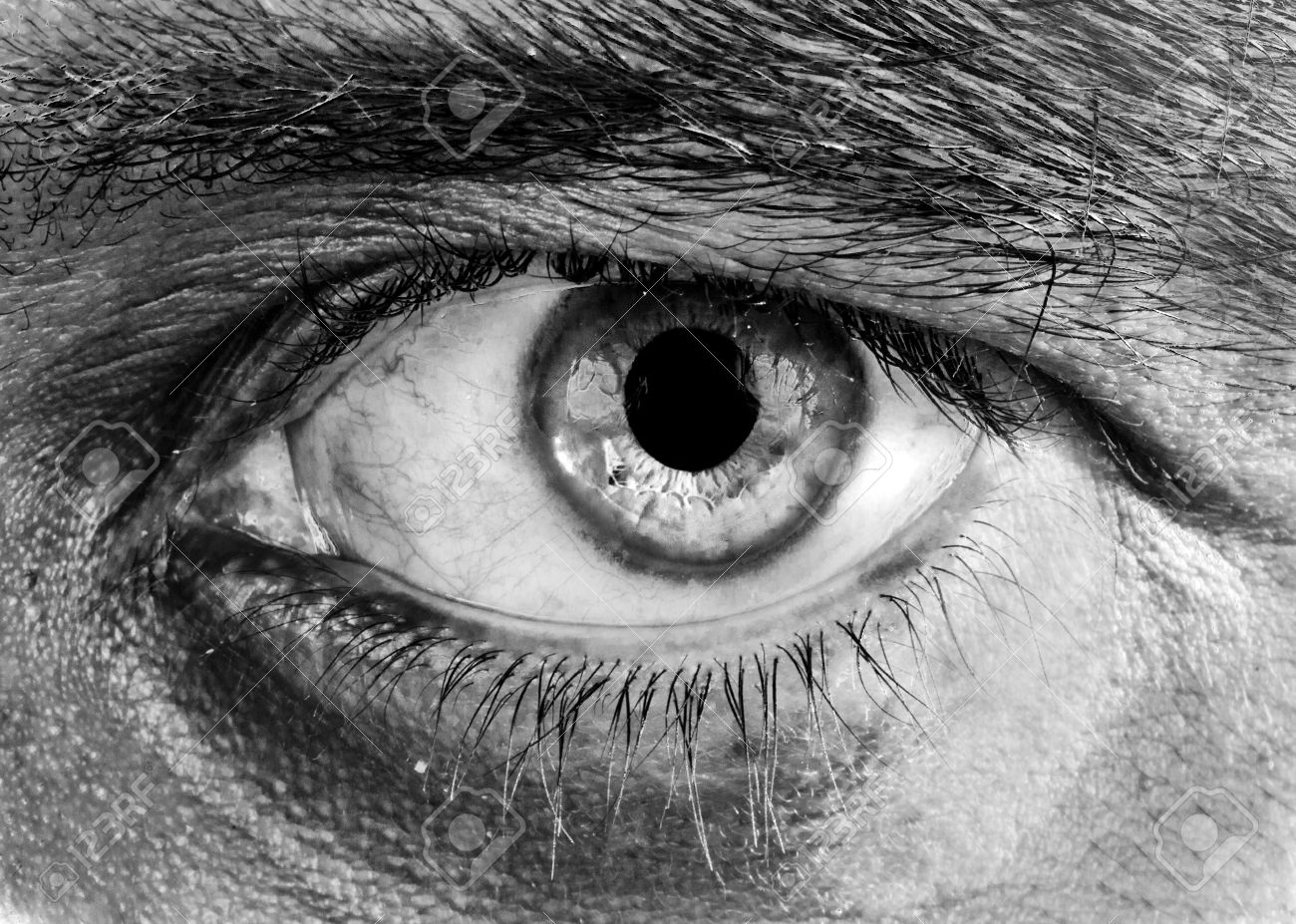 Human eye in black and white with soft focus and high contrast