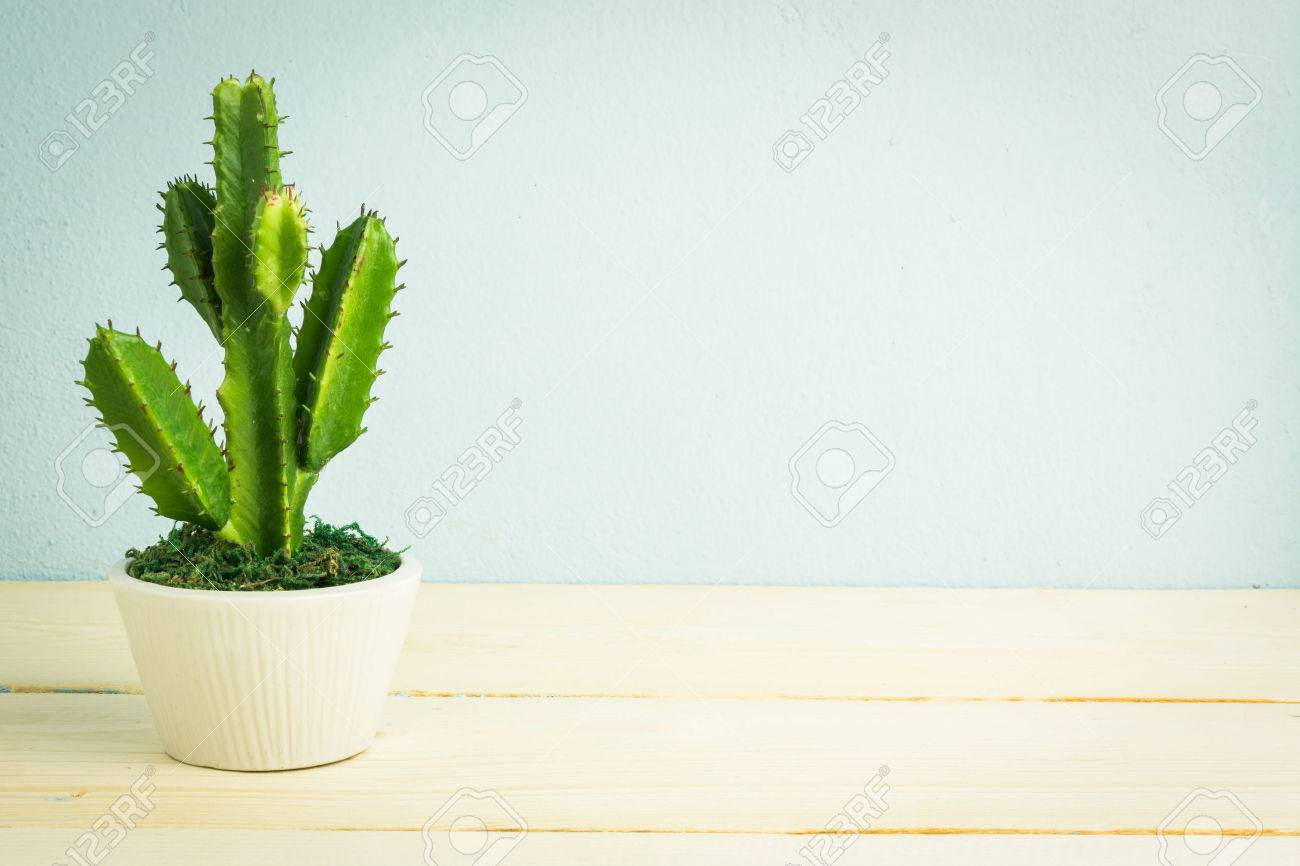 Cactus in the vase decor on wooden table, vintage tone - 42759742