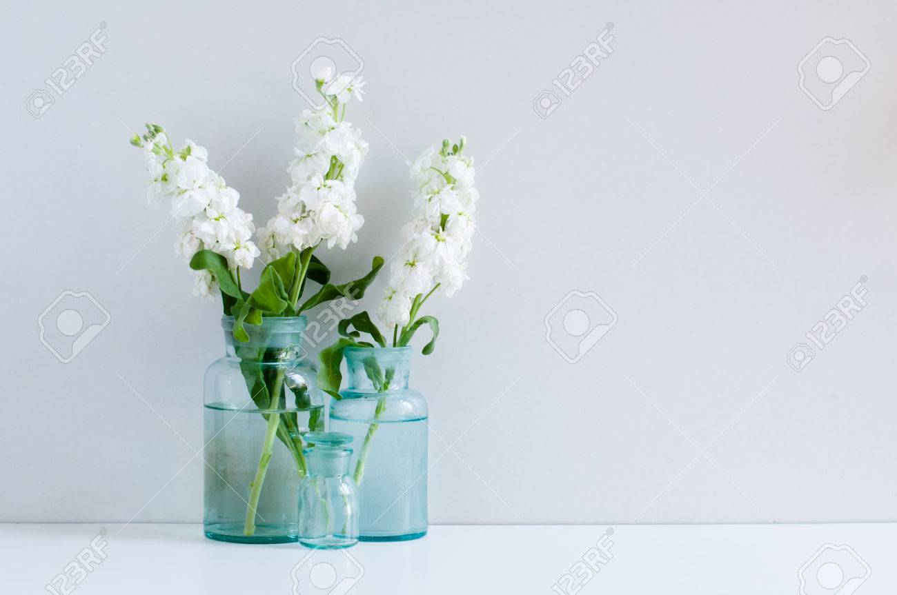 Vintage Home Decor Background White Matthiola Flowers In Different