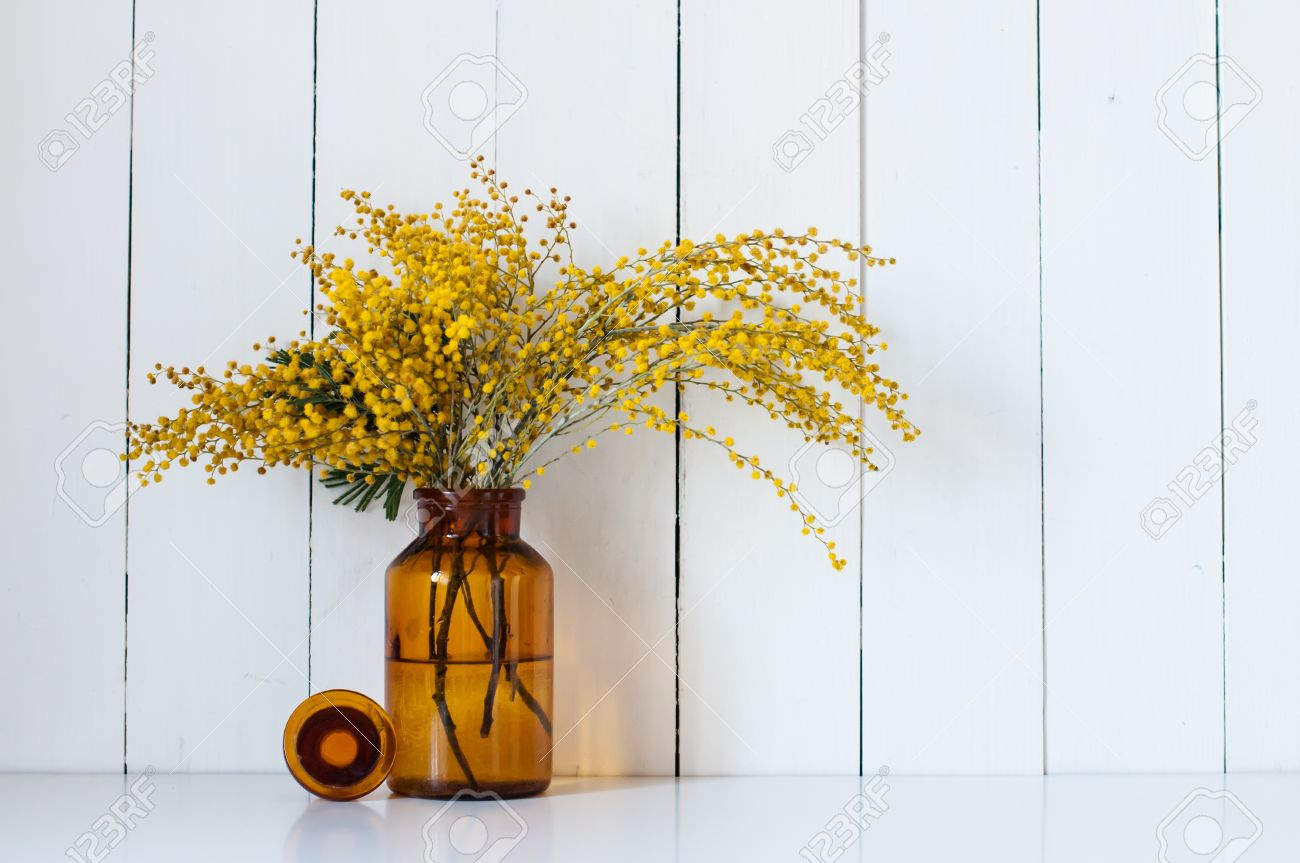home decor photography. Home decor  mimosa yellow spring flowers in a vintage bottle on the white wall background Decor Mimosa Yellow Spring Flowers In A Vintage Bottle Stock
