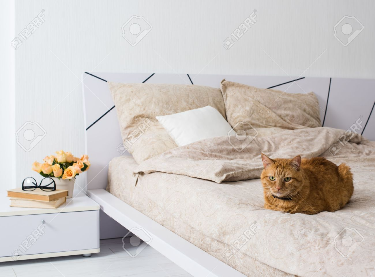 Bright White Bedroom Interior, Cat Sitting On A Bed With Beige Linen,  Flowers On