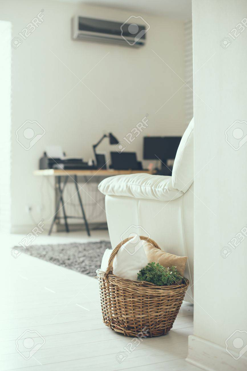 Stock photo wicker basket with pillows and green home plant on a floor by the sofa modern home interior decor