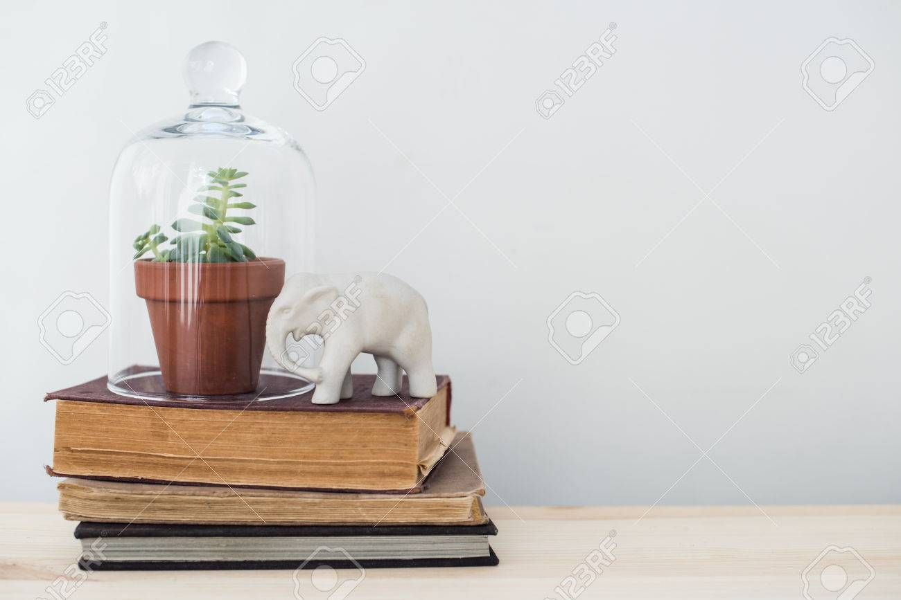 Stock Photo   Stylish Home Interior Decor, Vintage Style: Old Books, Green  Plants And Decorative Objects On A Table By The White Wall.