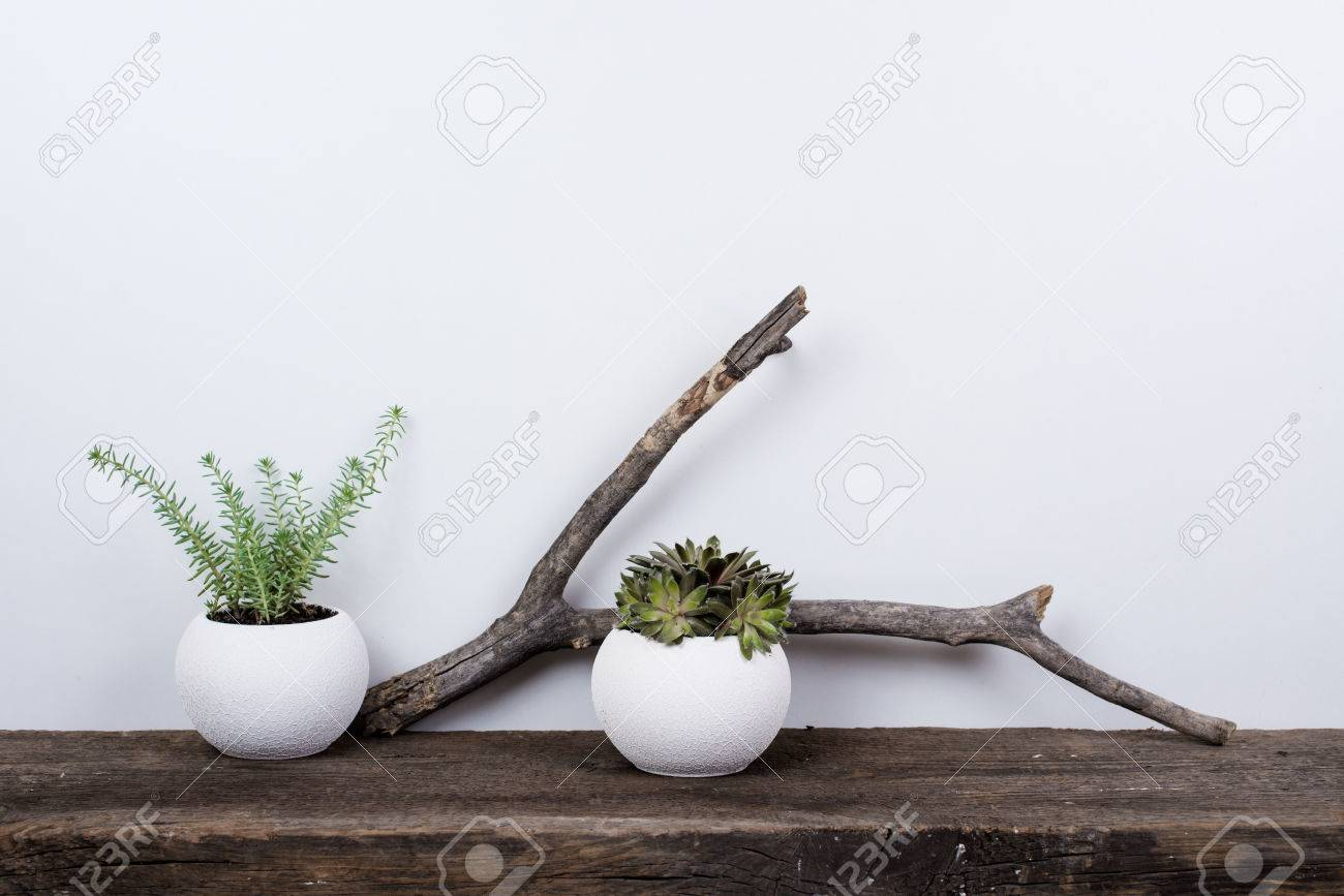 Scandinavian Style Home Decor With Plants On A Rustic Wooden Stock