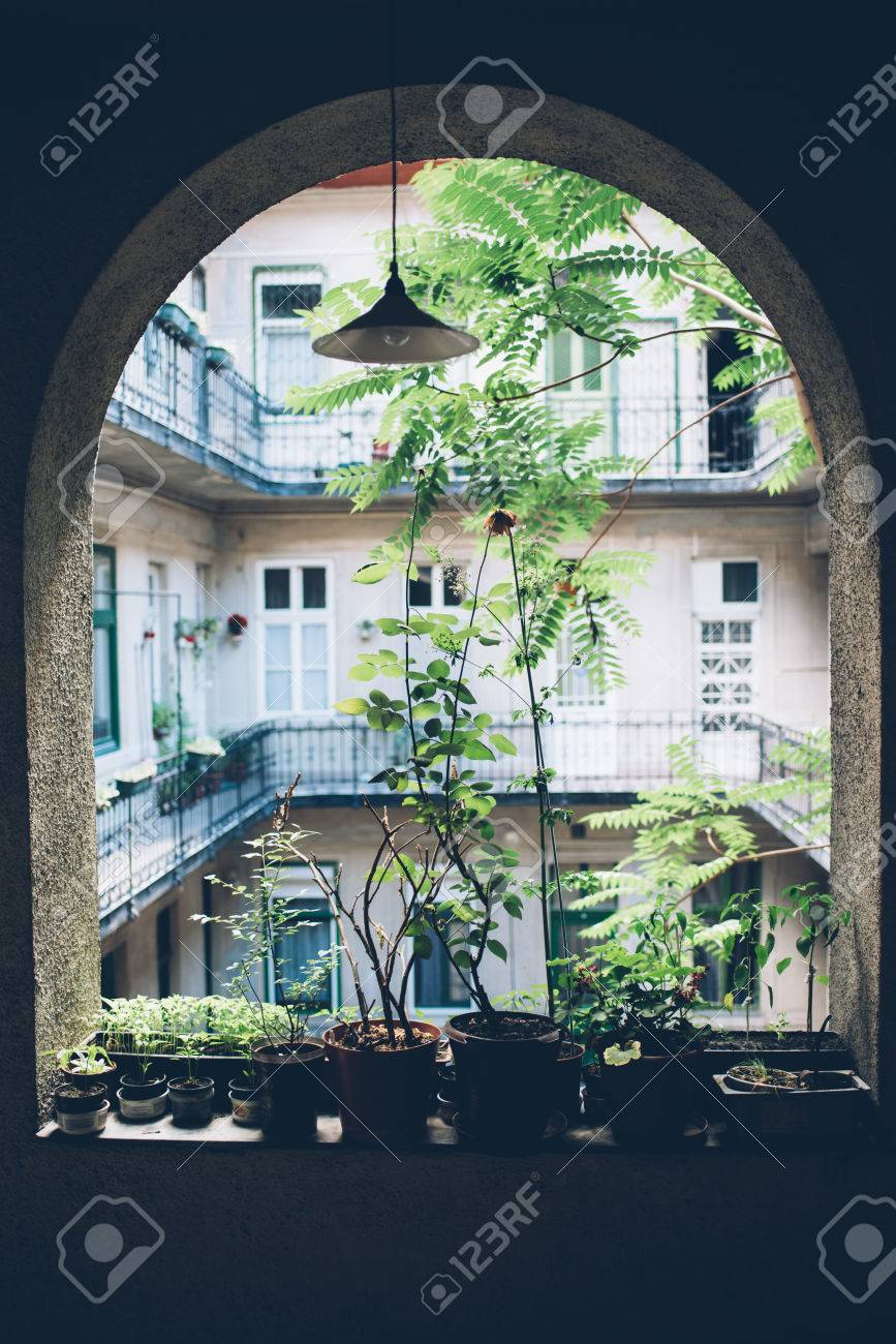 Awesome Home Plants And Herbs In Pots On Old House Veranda, Vintage Cour Stock  Photo