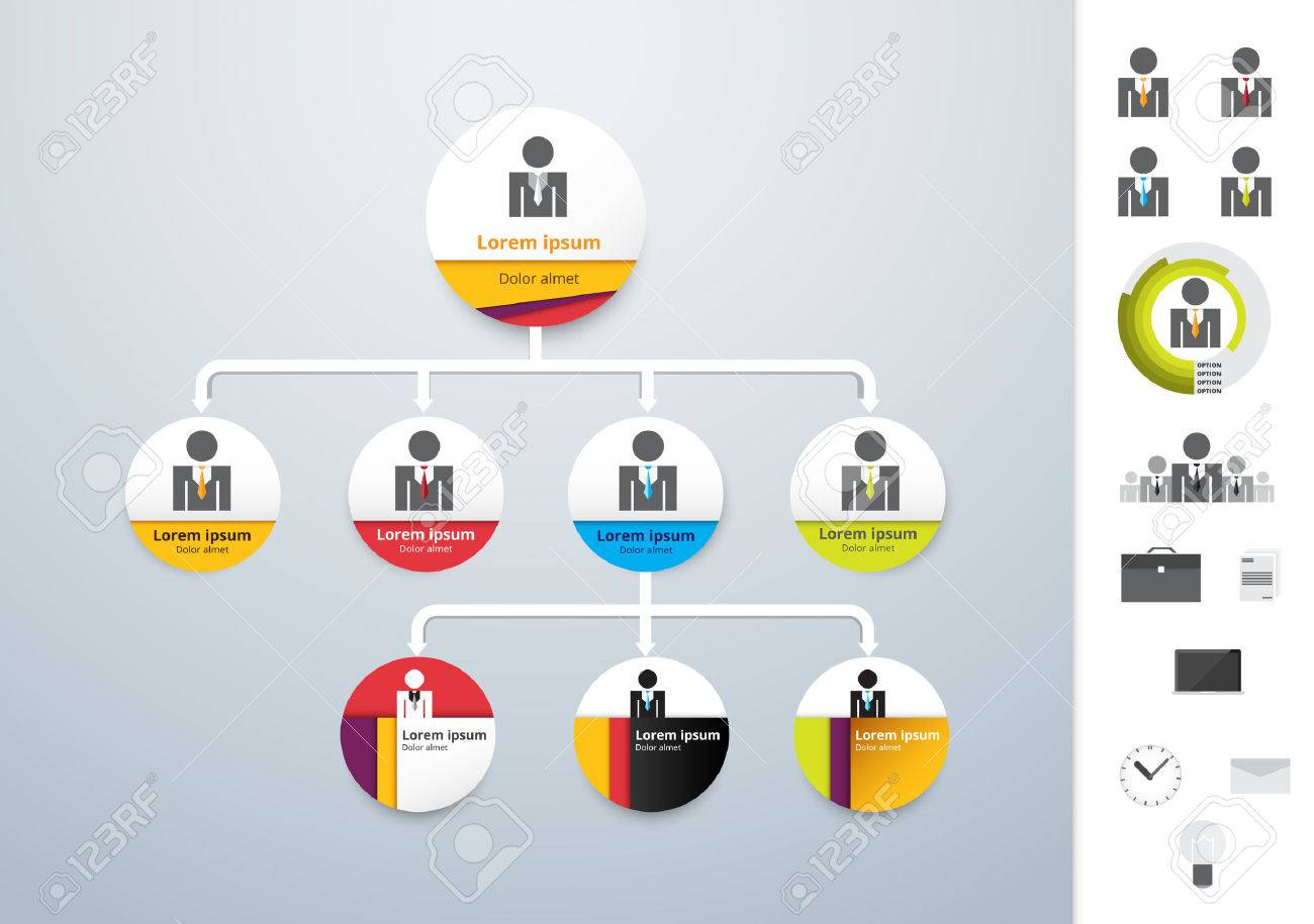 Vector Modern And Simple Organization Chart Template Vector