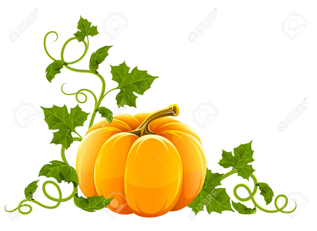 ripe orange pumpkin vegetable with green leaves Stock Vector - 7646122