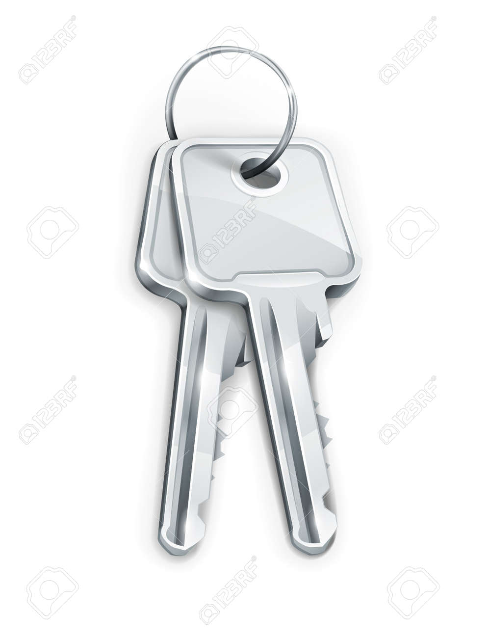 Sheaf of two silver keys. Transparent objects used for shadows and lights drawing Stock Vector - 12422390