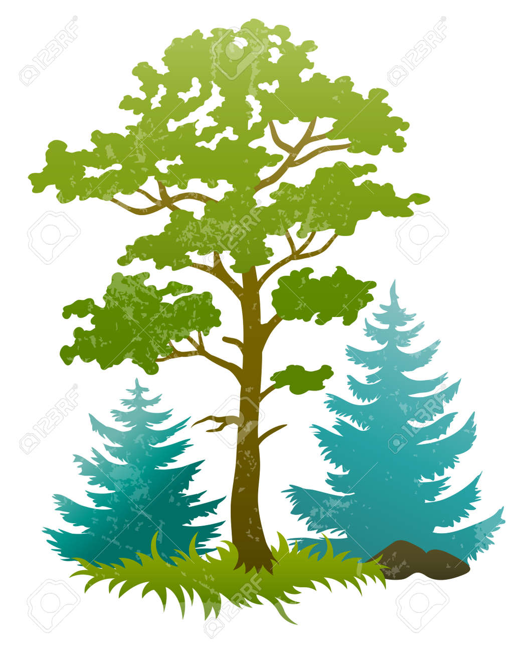 grunge silhouettes of forest tree and fir trees. Transparent objects used for shadows and lights drawing Stock Vector - 12422399