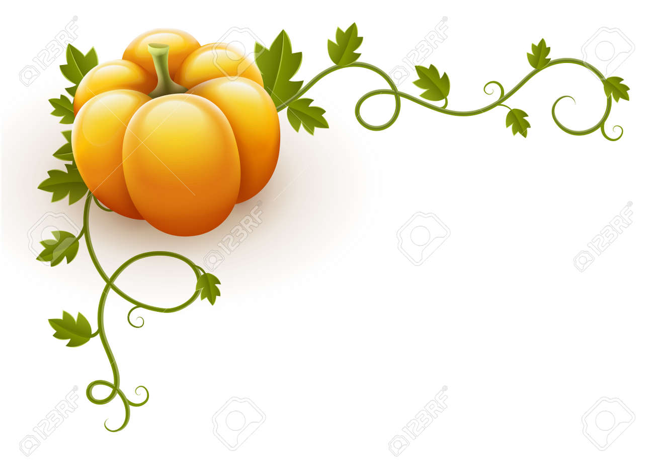 pumpkin vegetable with green leaves vector illustration isolated on white background EPS10. Transparent objects used for shadows and lights drawing. Gradient mesh. Stock Vector - 15683591