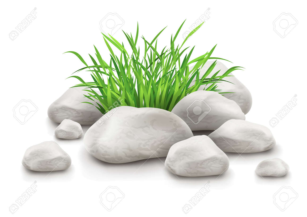 green grass in stones as landscape design element vector illustration isolated on white background EPS10. Transparent objects used for shadows and lights drawing. Gradient mesh used. Stock Vector - 16221467