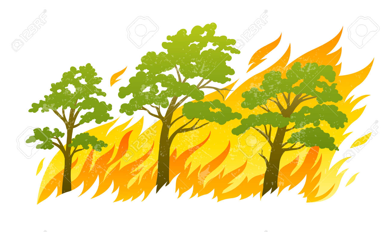 burning forest trees in fire flames - natural disaster concept, vector illustration isolated on white background. Stock Vector - 17844308