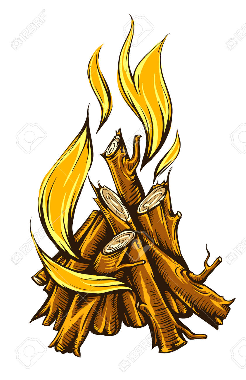 Flame fire of campfire with firewood. Isolated on white background Stock Vector - 26111436