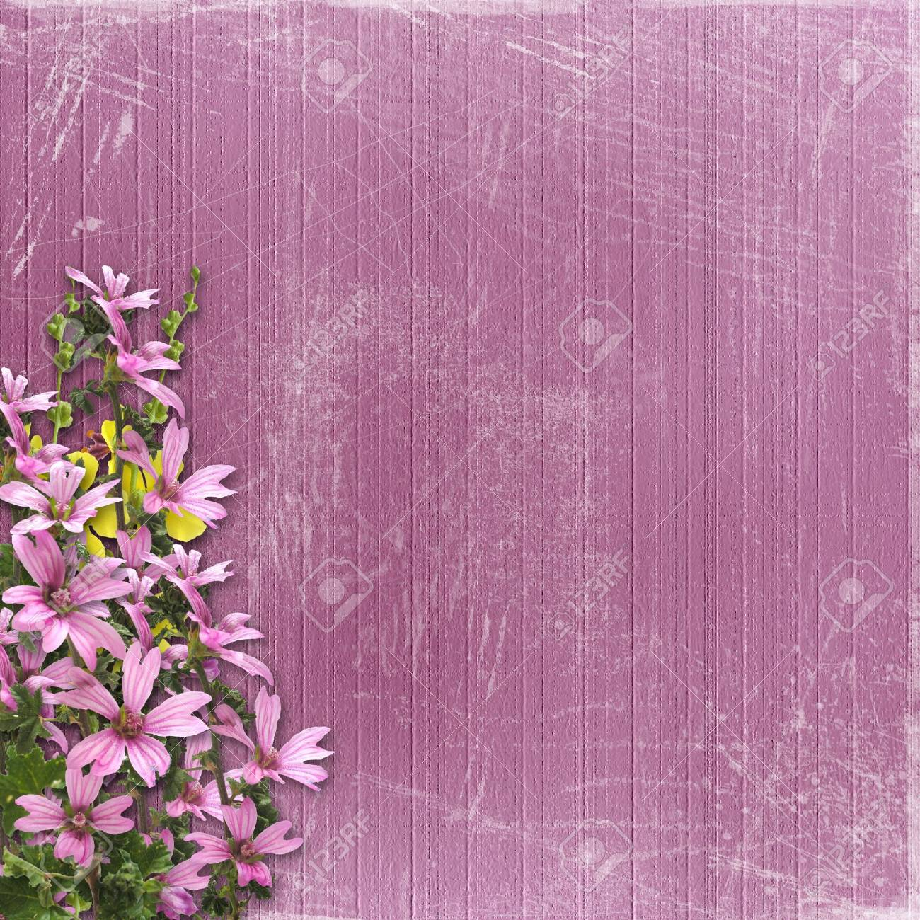 Pink abstract background with floral beautiful bouquet Stock Photo - 4607465