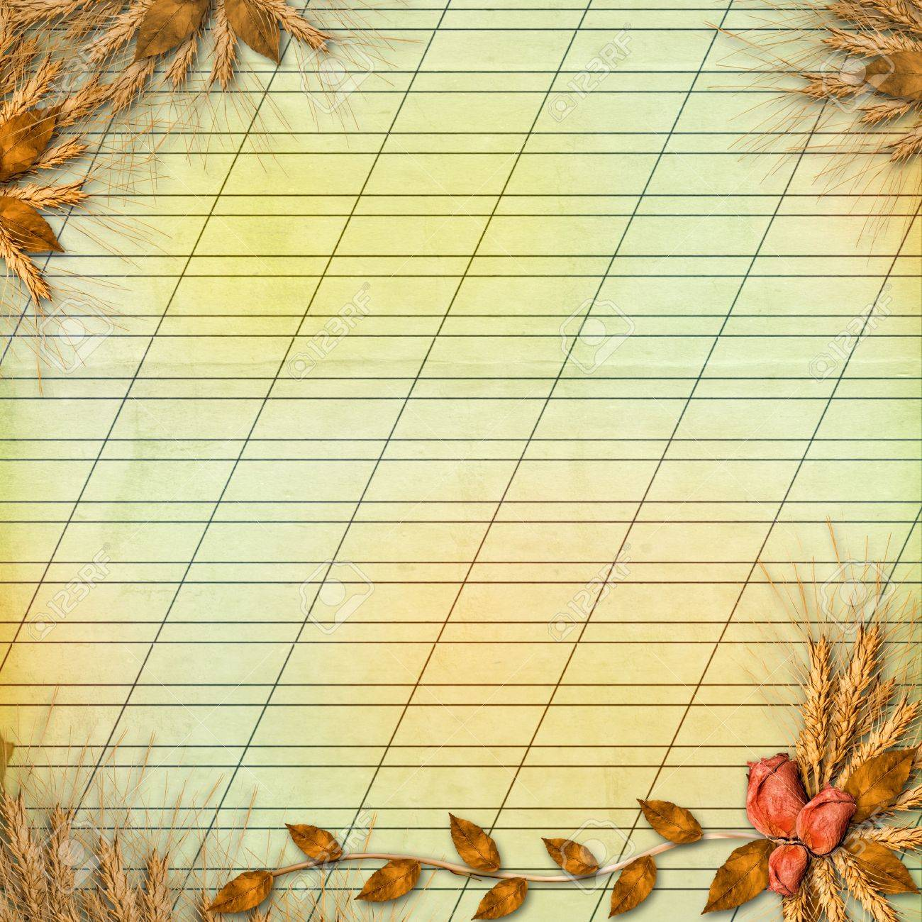 Grunge paper in scrapbooking style with bunch of rose Stock Photo - 5648787