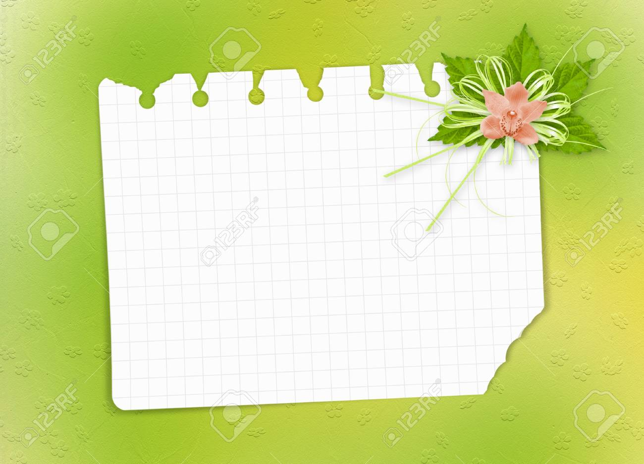 Card for invitation or congratulation with orchid Stock Photo - 9096866