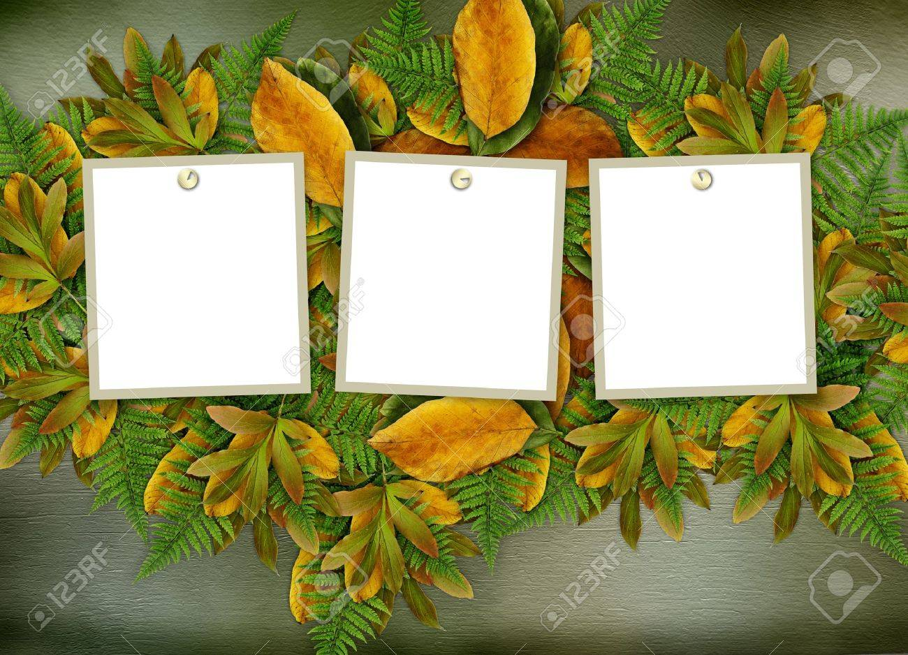 Grunge frame on the old paper for congratulation Stock Photo - 9485141