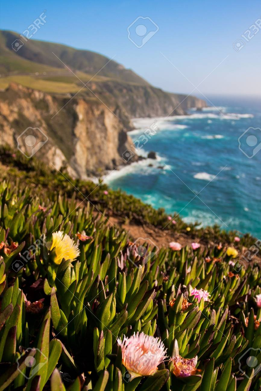 Beautiful Coastline in Big Sur,California - 19194828