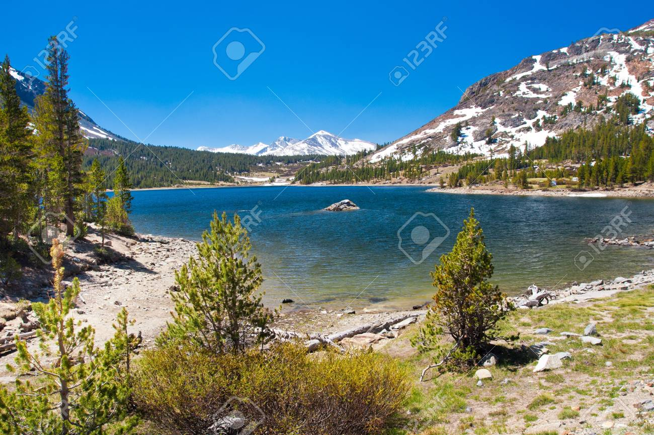 Snow-capped Mountains and Lake in Yosemite National Park,California - 20138936