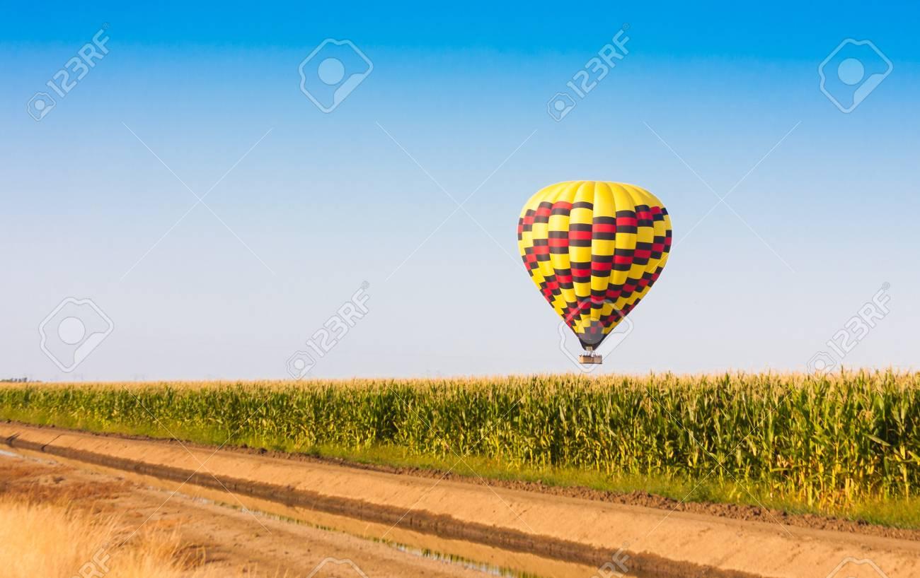 Hot air balloon flying over corn fields against blue sky - 21167038