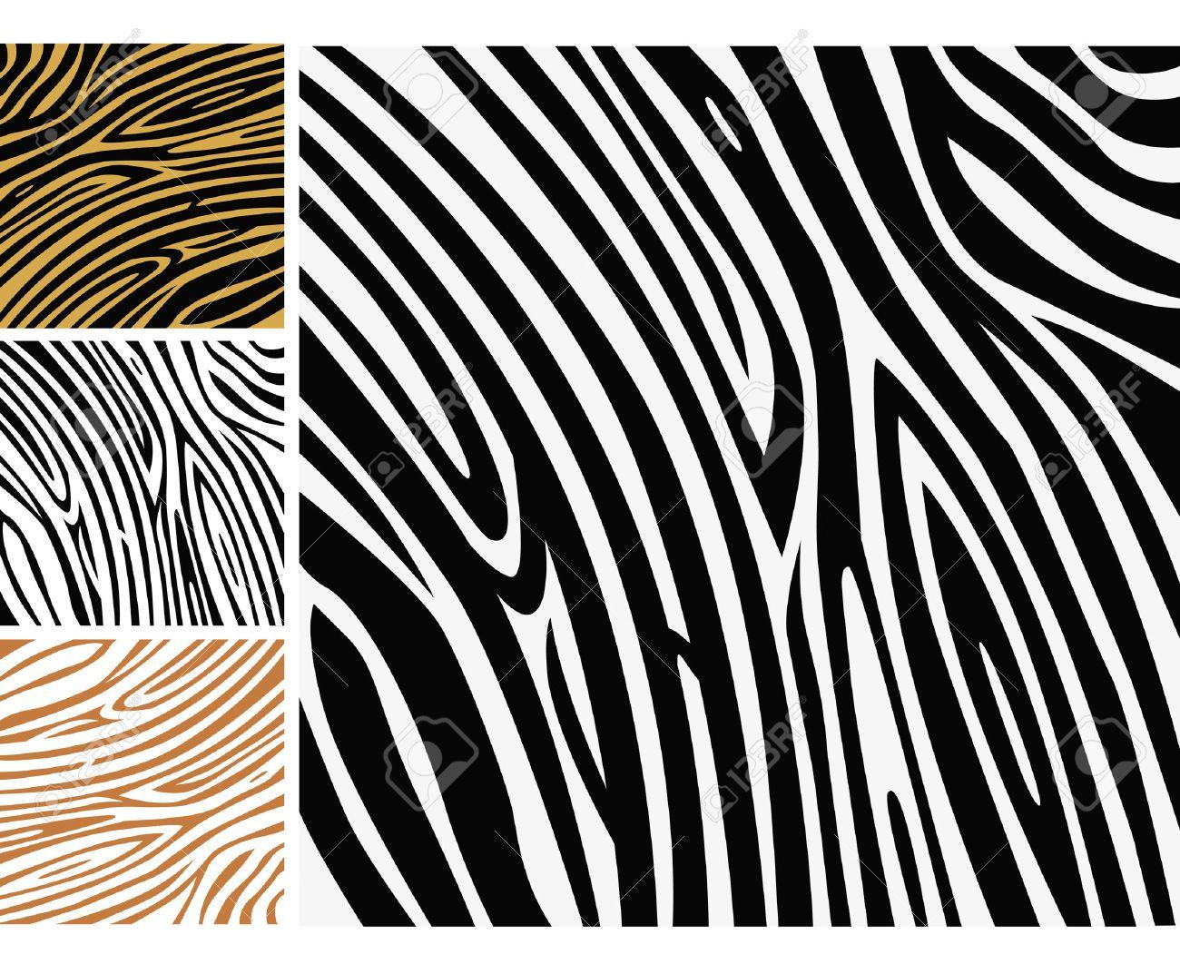 Animal background pattern - zebra skin print. Background texture of zebra skin. Use this zebra print for your unique design! - 6642941