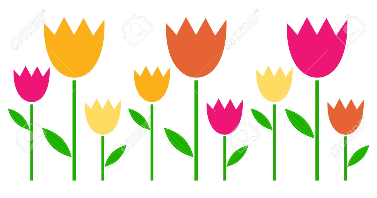 Fresh cute colorful Tulips isolated on white. Stock Vector - 18493899