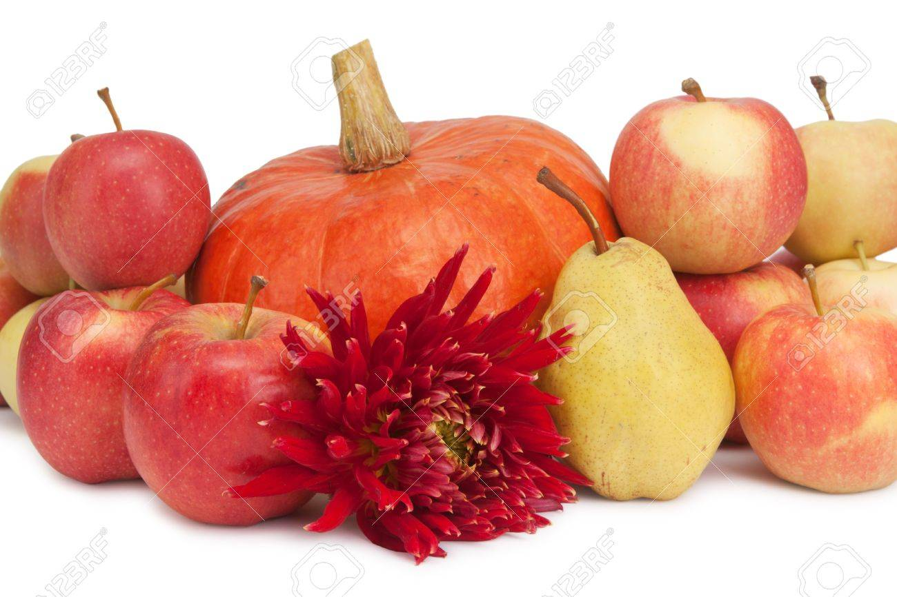 pumpkin, apples and pear and dahlia isolated on white Stock Photo - 10615536