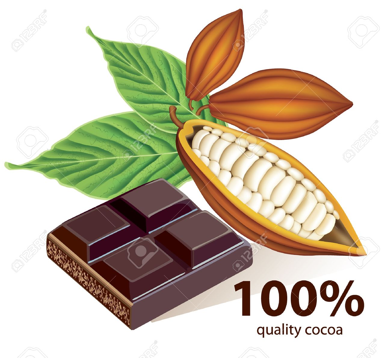 Vector cocoa beans with chocolate bar - 10502085