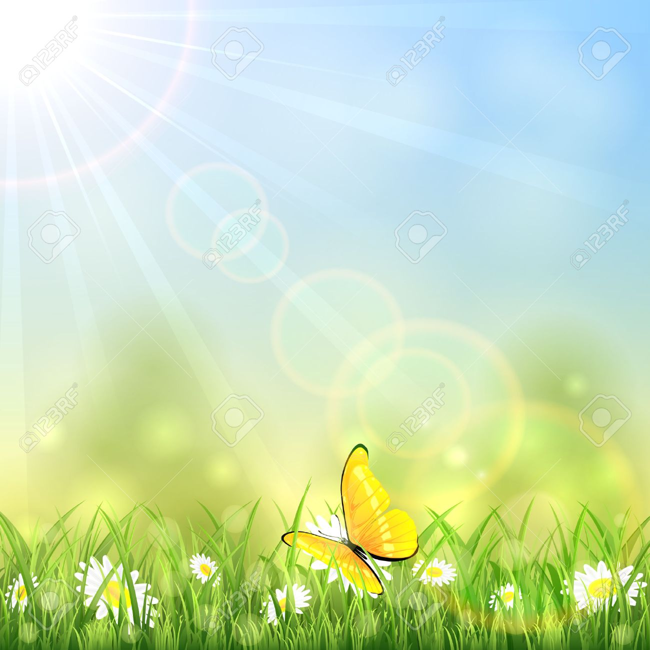 Yellow butterfly and white flowers on sunny background, illustration. - 43090017