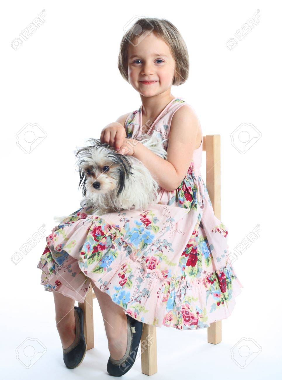 portrait of beautiful girl with dog isolated on white - 13988046