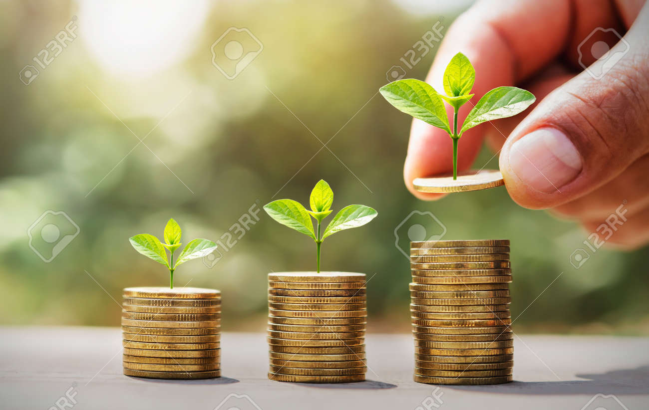 saving money hand putting coins on stack with small tree growing. concept finance and accounting - 169743476