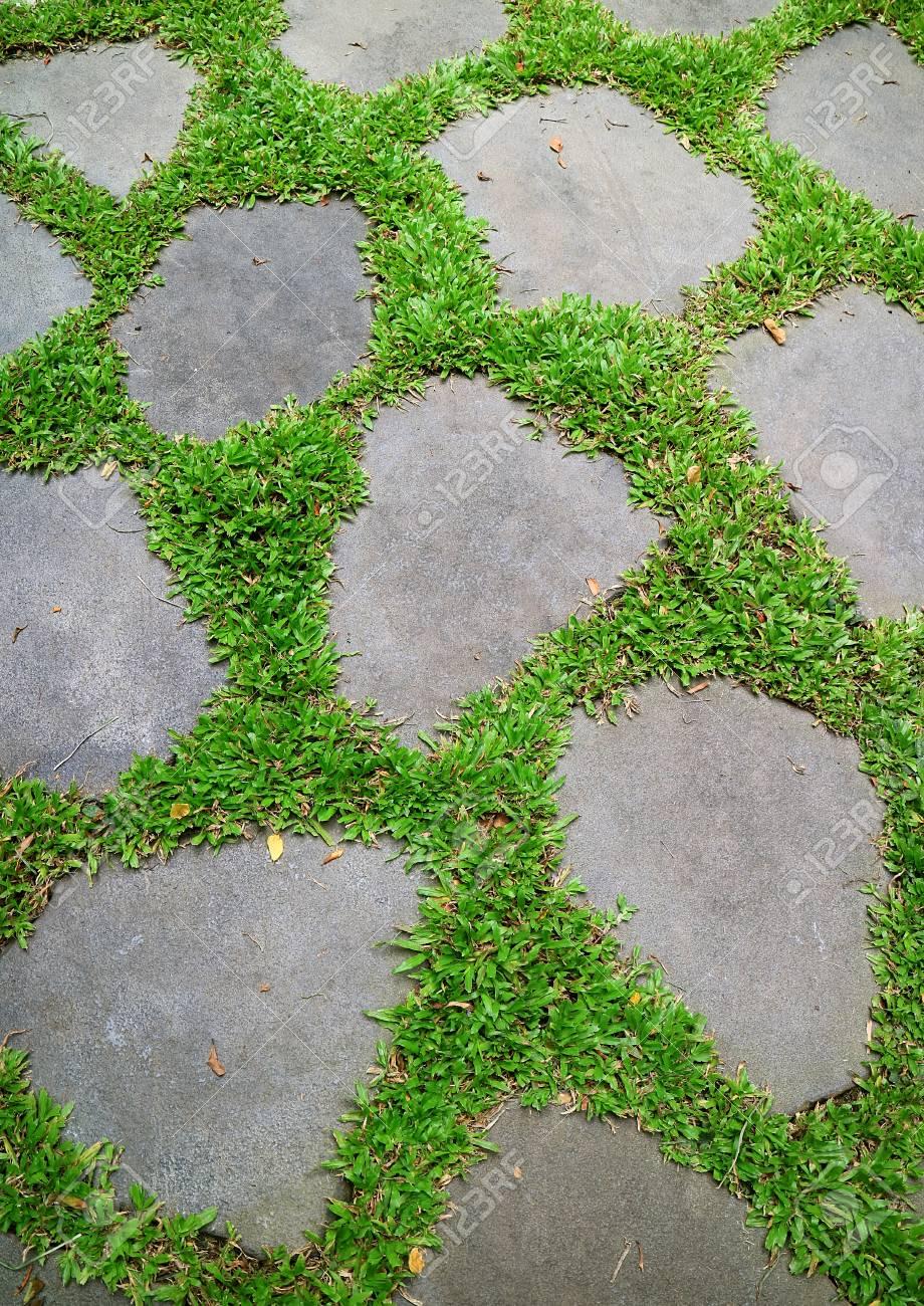 lebendige grüne gräser glühen zwischen garten trittsteine