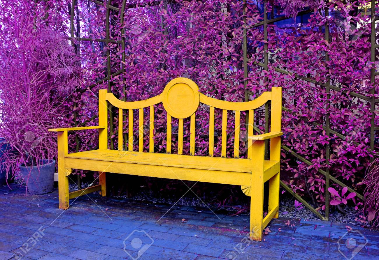 Prime Surreal Pop Art Style Yellow Wooden Bench In Purple Colored Garden Pabps2019 Chair Design Images Pabps2019Com
