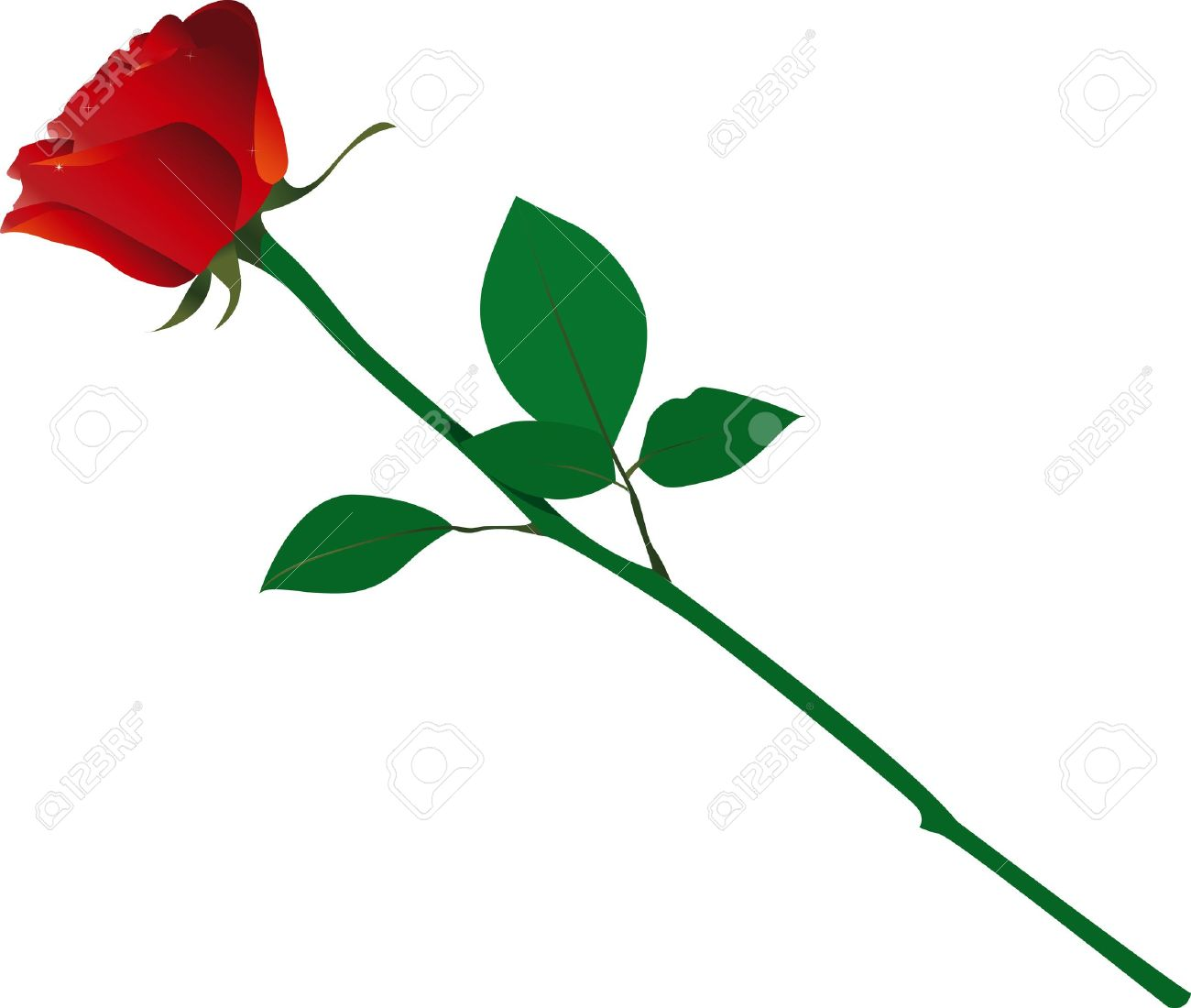 Single Rose Royalty Free Cliparts Vectors And Stock Illustration Image 16329423