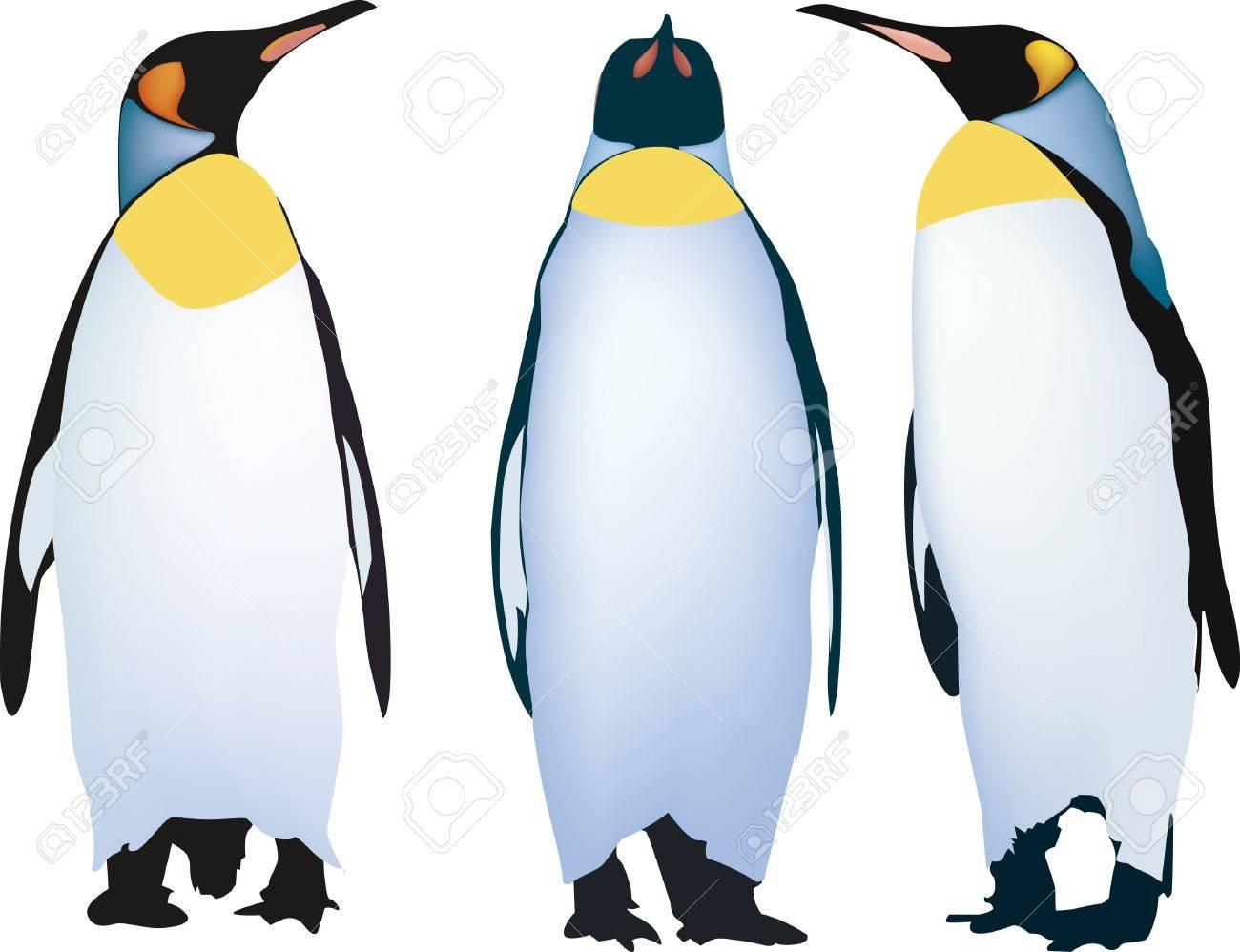 three penguins Stock Vector - 16306759