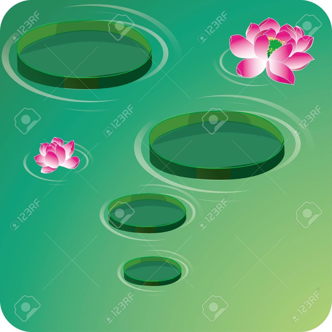 Lotus flowers Stock Vector - 16298306