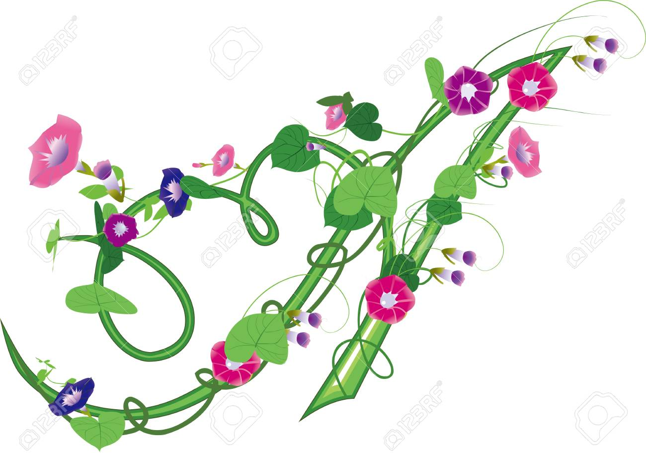 The morning glory text design, gardening Stock Vector - 16796638