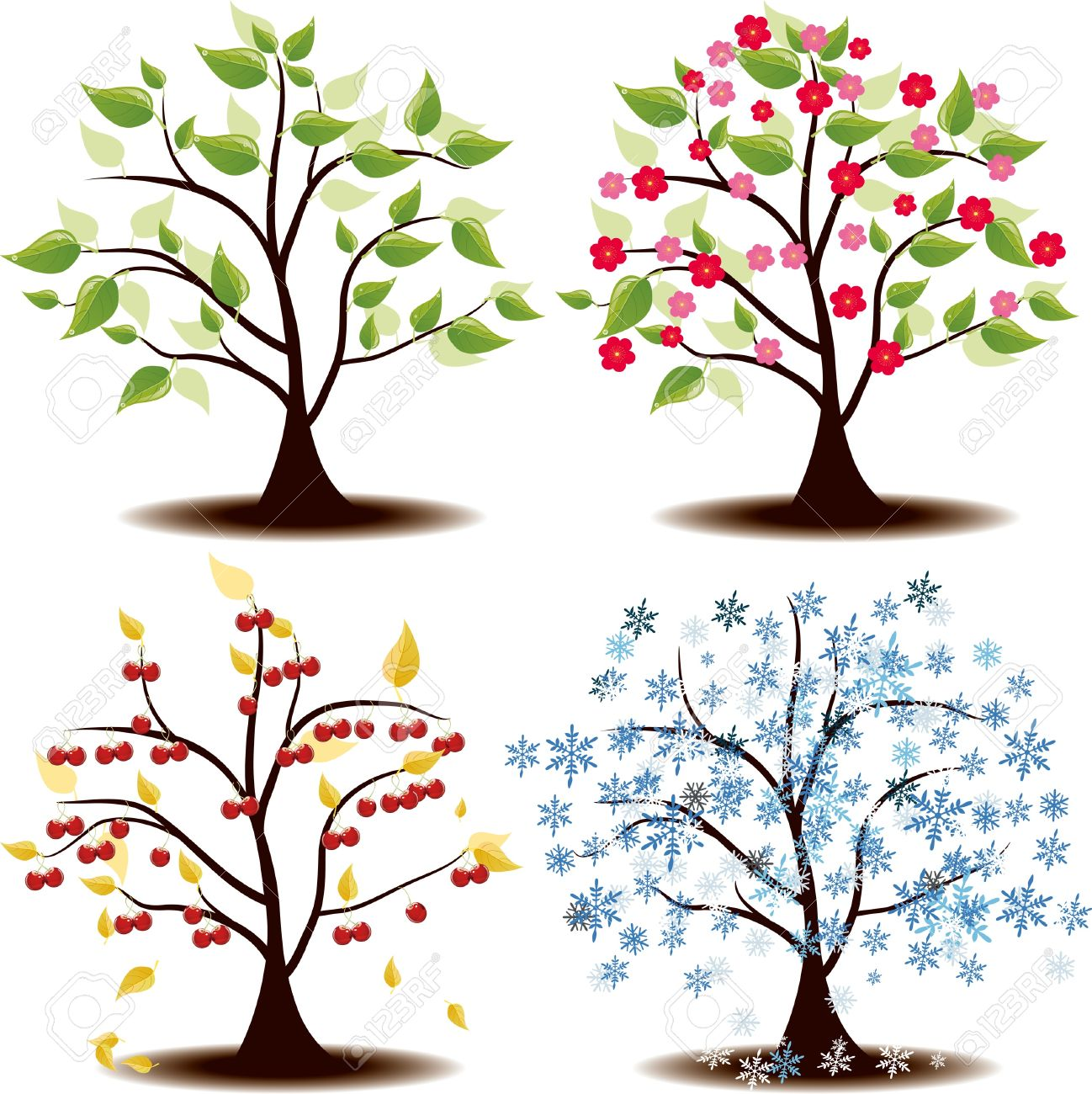 four seasons state u0027s cherry tree royalty free cliparts vectors