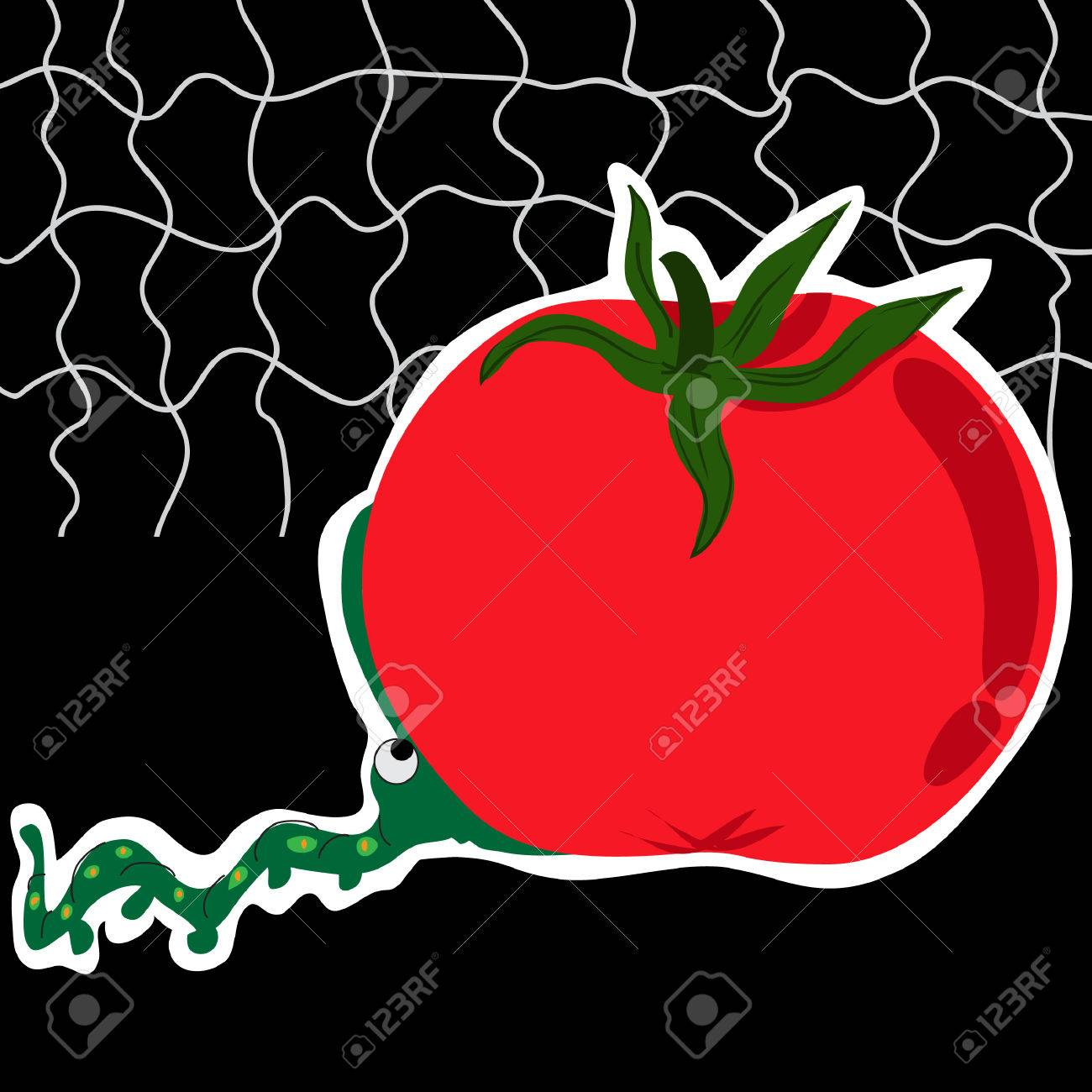 Background image too big - An Adorable Worm Attempting To Chew The Too Big Tomato On A Black Background