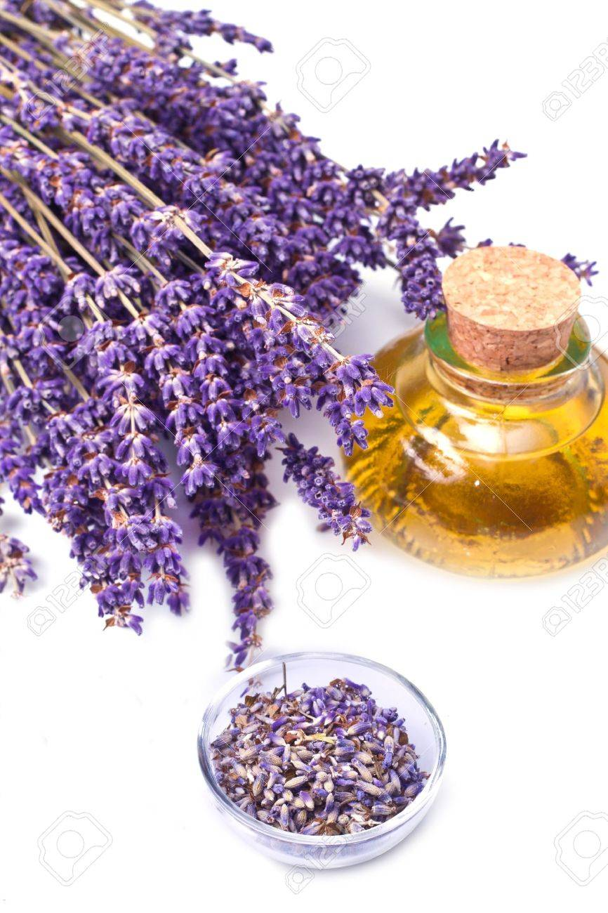 lavender flowers with oil  isolated on white background Stock Photo - 9776900
