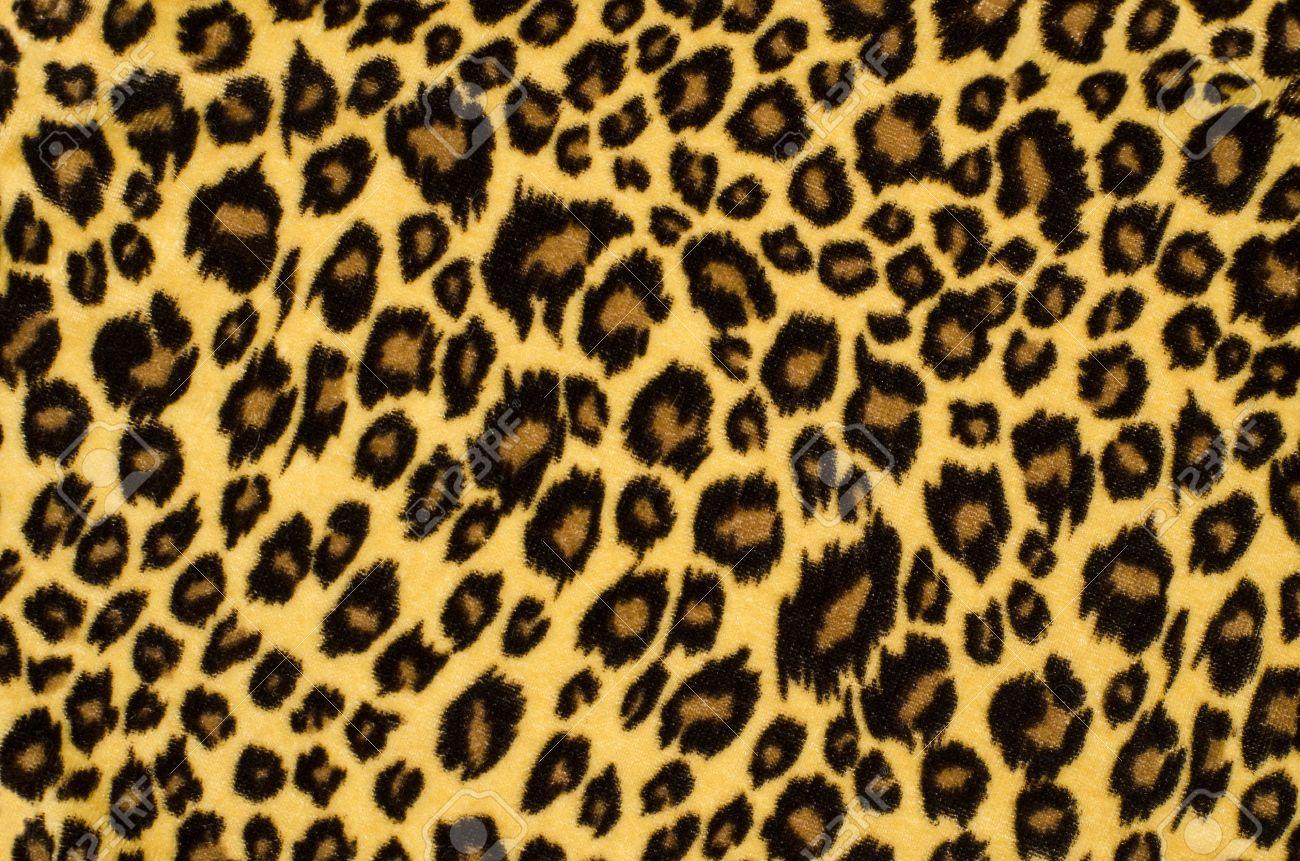 Leopard Patterns Stock Vector 631546928 - Shutterstock