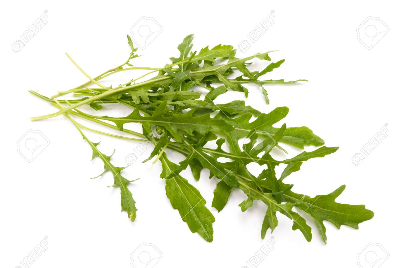 ruccola salad fresh heap leaf isolated on white Stock Photo - 5316504