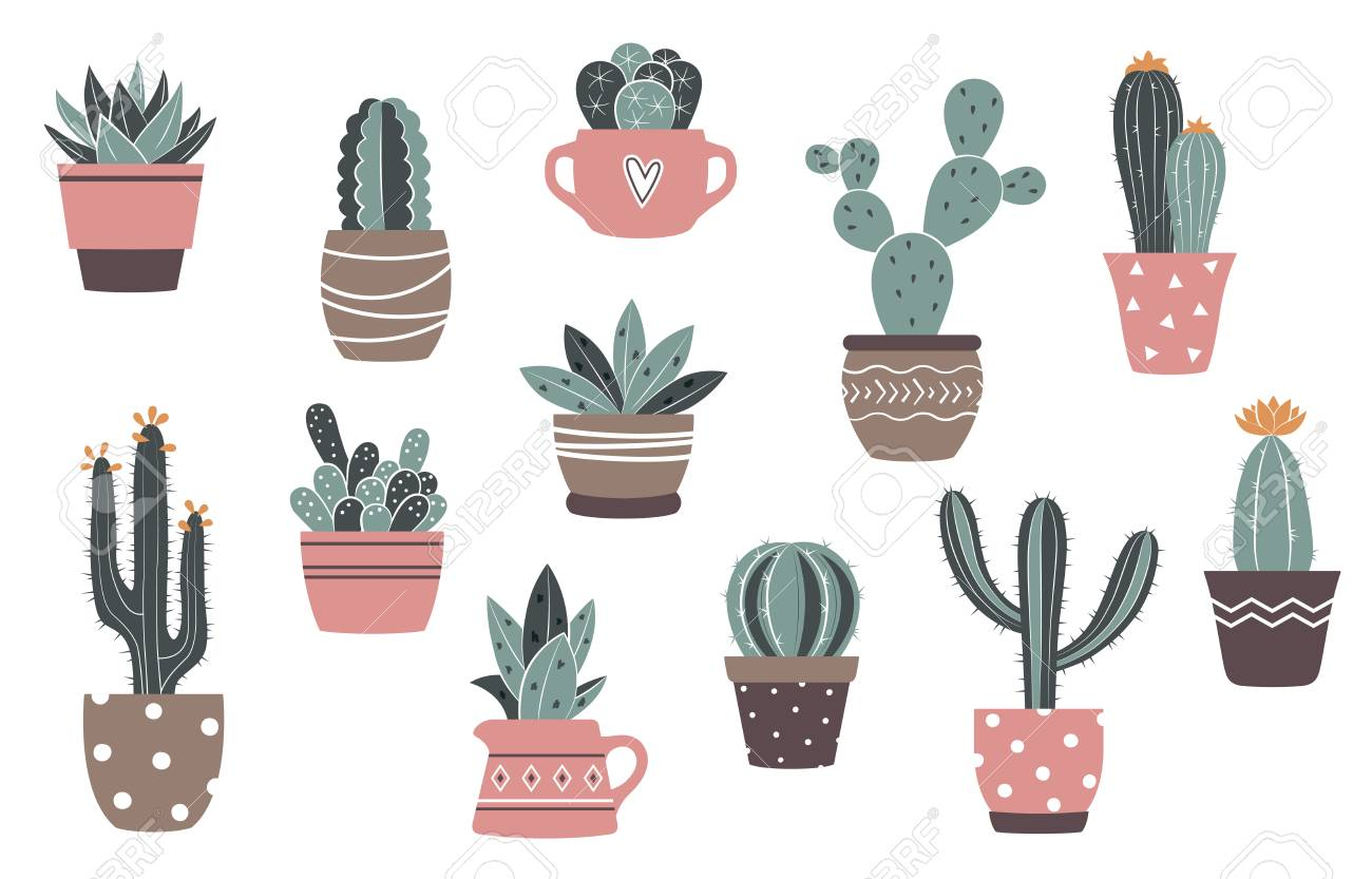Vintage Vector Cactus And Succulents Set Cute Cactus In Flower