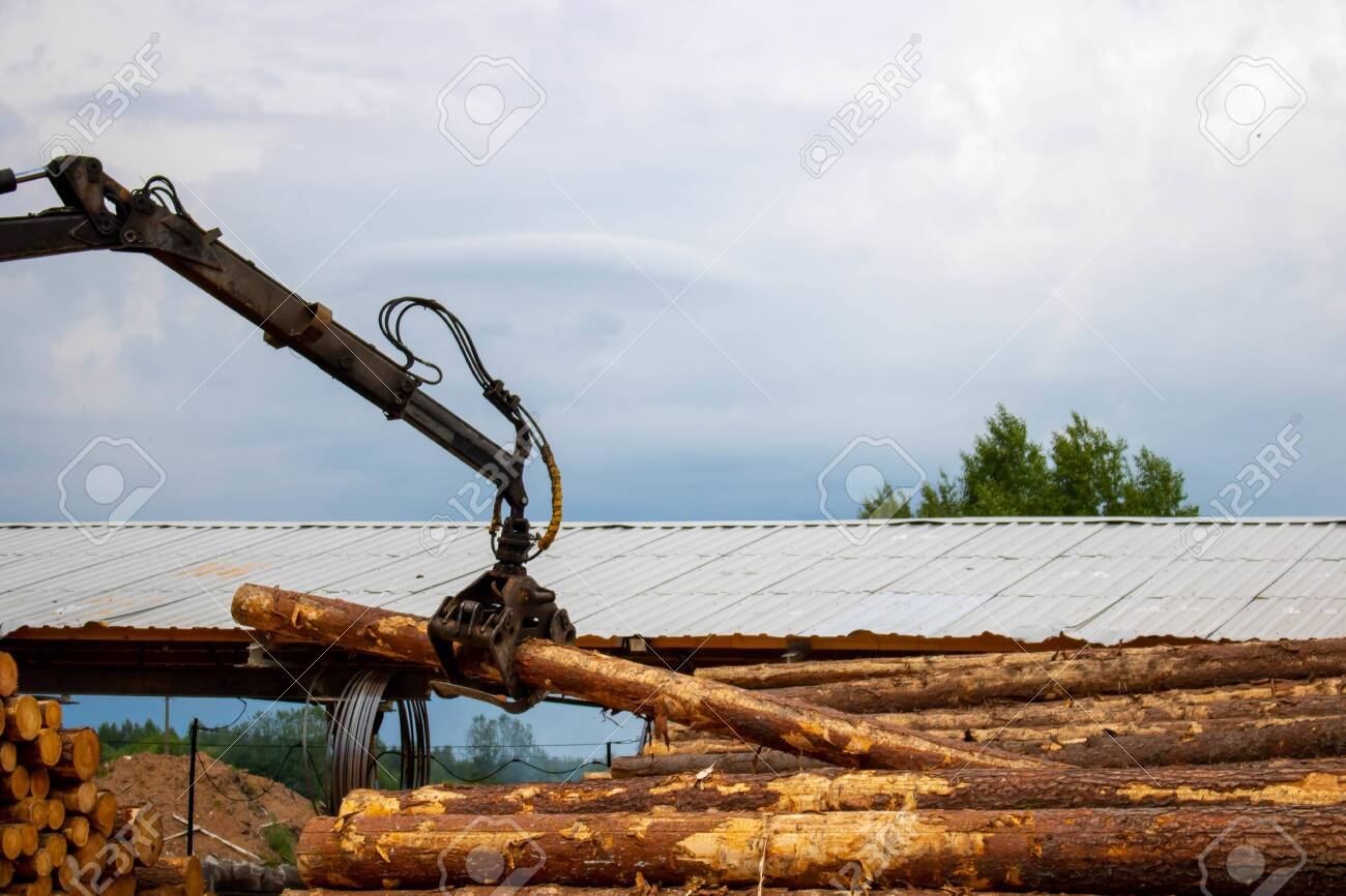 Logging, sawmill. Manipulator for loading wood. The loader of boards and logs works against the background of a stormy sky. - 150198957