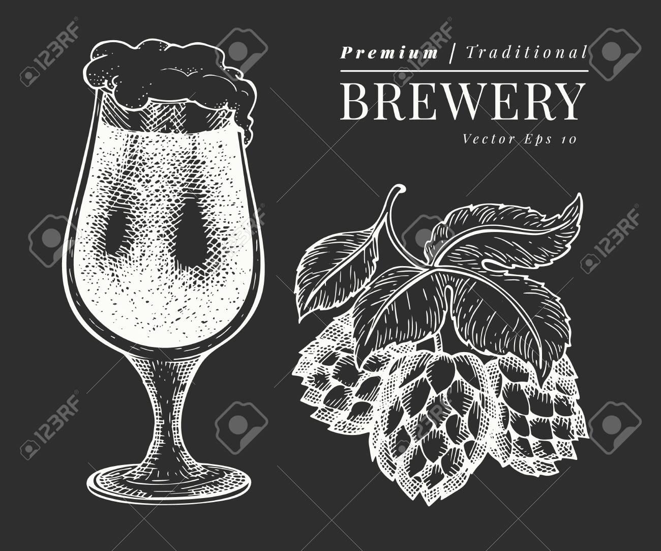 Beer glass and hop illustration. Hand drawn vector pub beverage illustration on chalk board. Engraved style. Vintage brewery illustration. - 137501269
