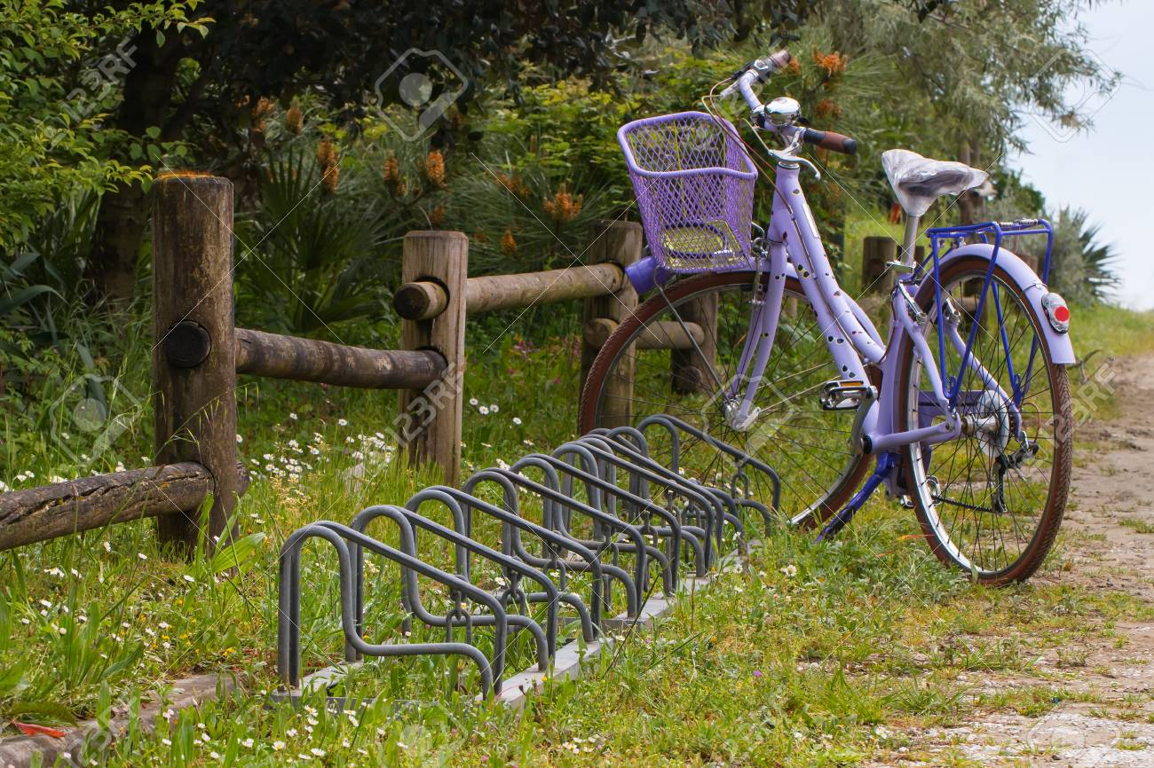 violet bike with basket and bicycle raks near a wooden fence in a dirt orad - 42020028