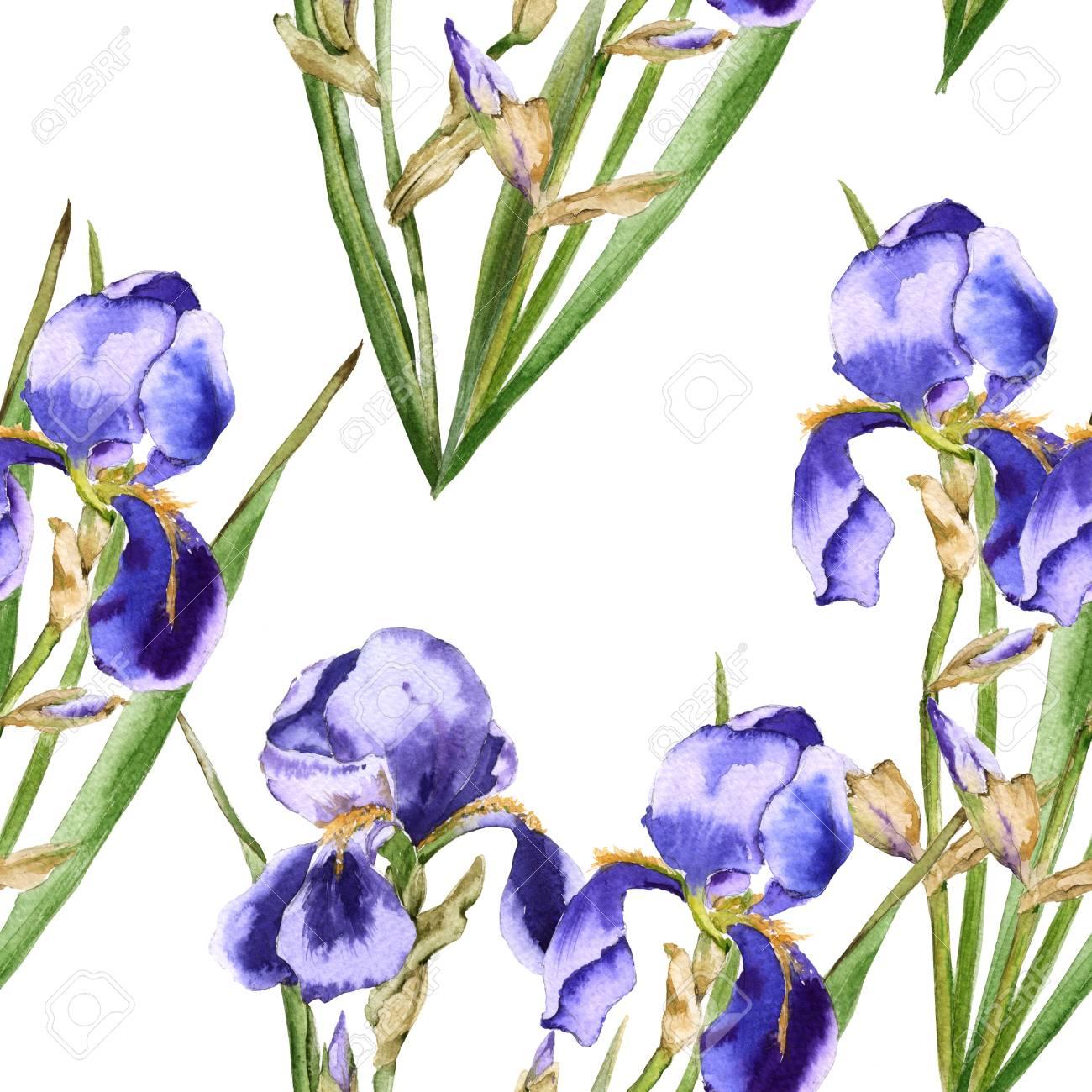 Background of iris flowers seamless pattern for fabric watercolor background of iris flowers seamless pattern for fabric watercolor illustration stock illustration izmirmasajfo