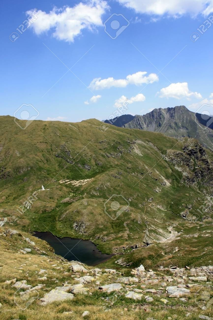 Goat lake in summer time, Romania Stock Photo - 14540832